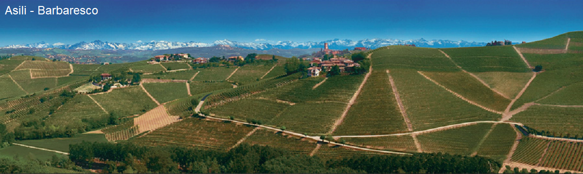 Bruno Giacosa - Asili in Barbaresco